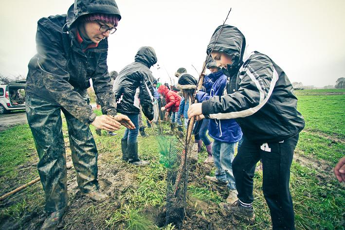 PReforestation Noteboom écoles Bailleul2015©A.Traisnel-15